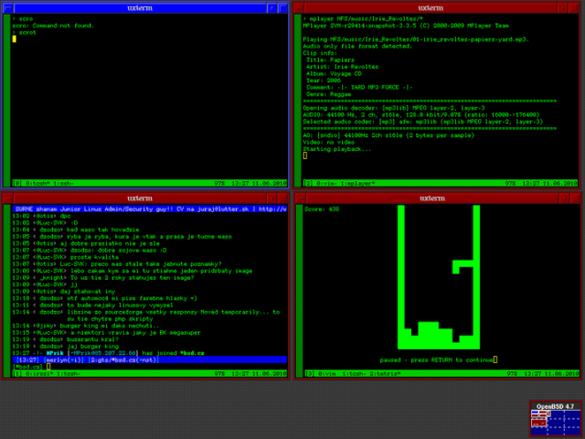 Merlyn TPx31 OpenBSD Screenshot